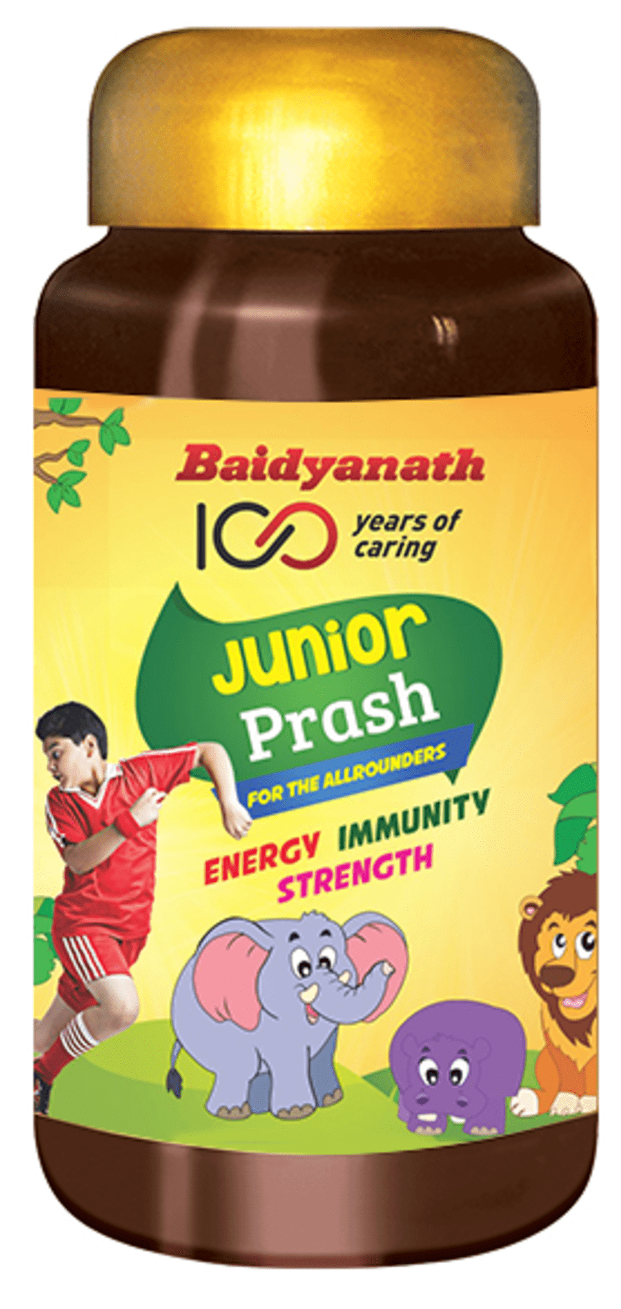 Baidyanath Junior Prash - 500 Gm